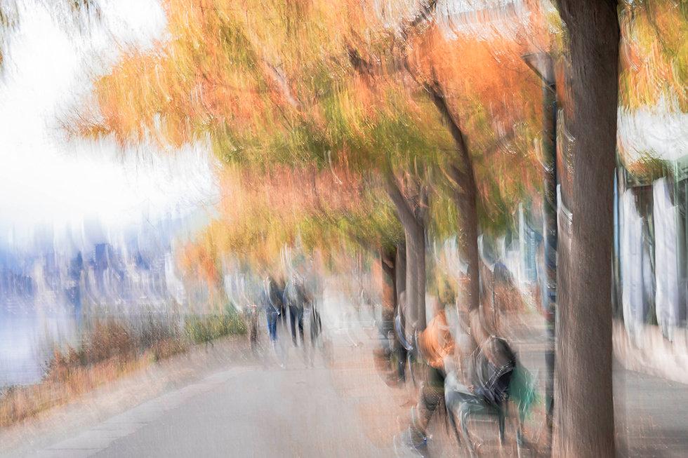 Promenade_bord_Lac-5809.JPG