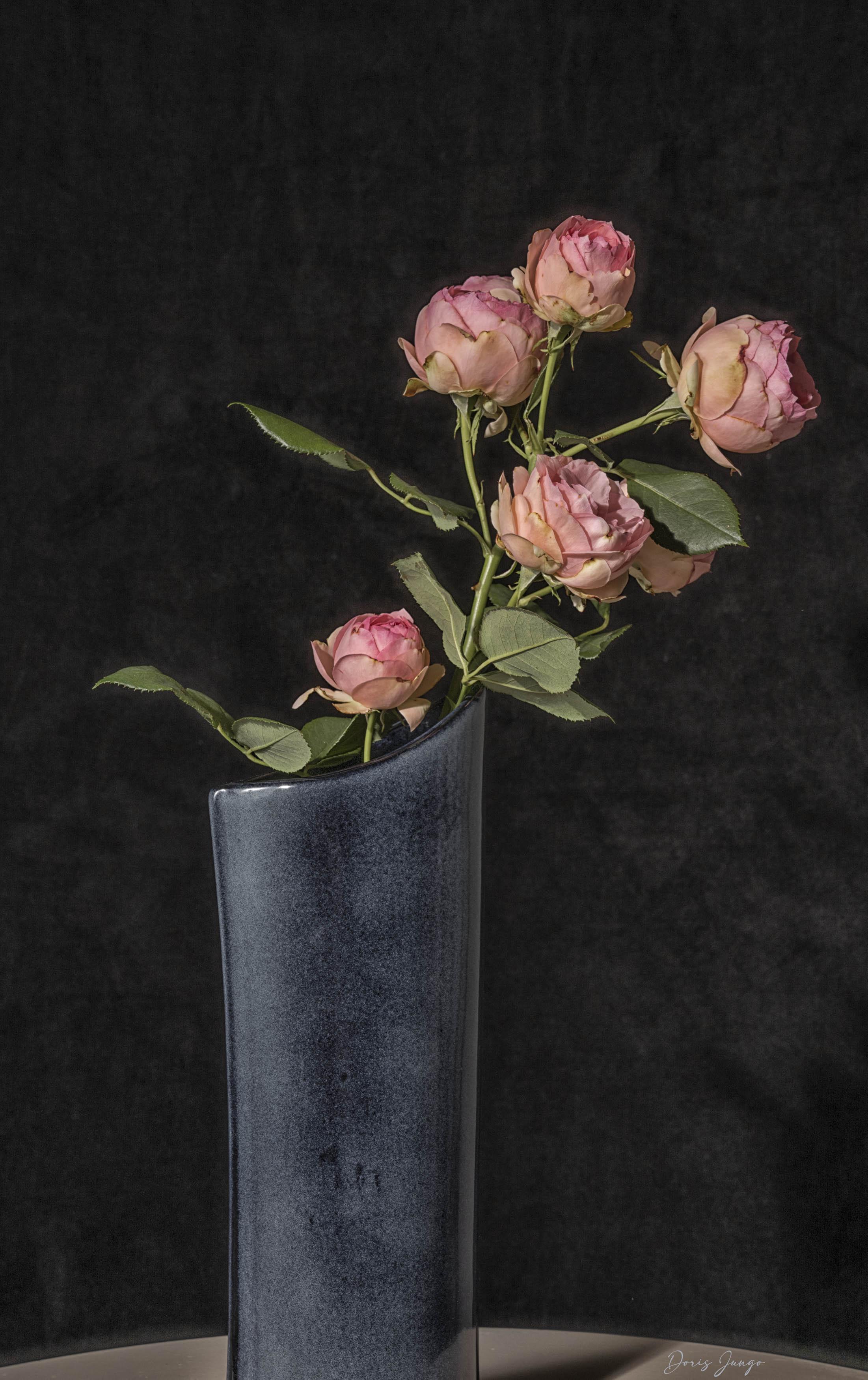 Une branche de roses anciennes