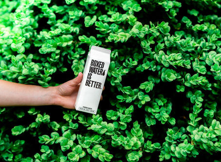 Greenwashing kam se podíváš