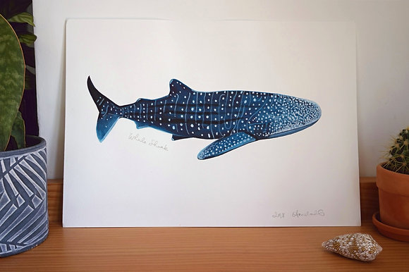 Whale Shark original Watercolour