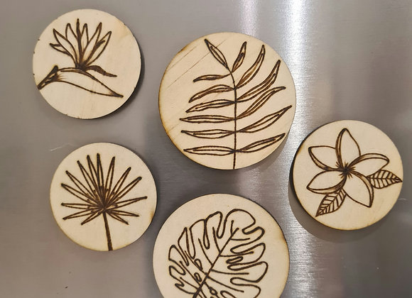 Magnet Set of 5 - Tropical Collection