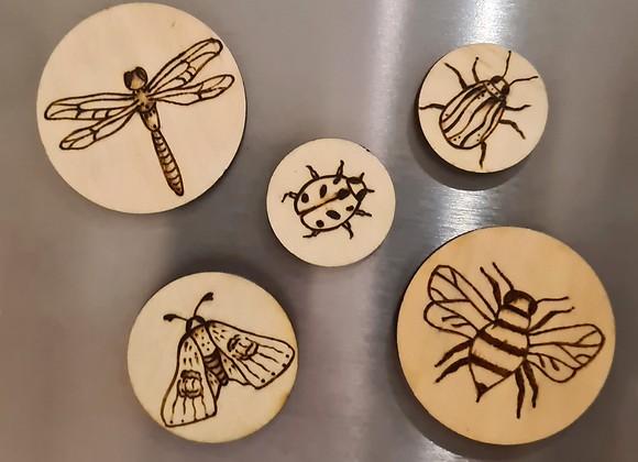 Magnet Set of 5 - Bugs Collection
