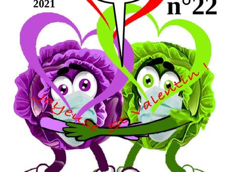 La feuille de chou N°22 - FÉVRIER 2021