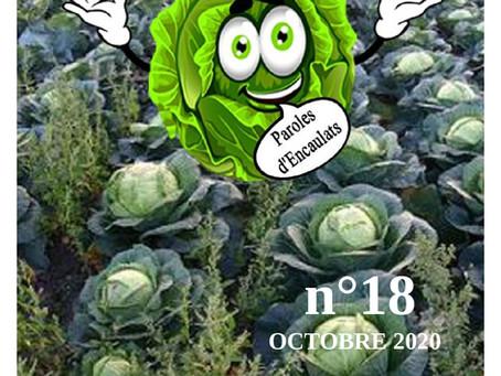 La feuille de chou N°18 - OCTOBRE 2020