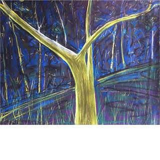 Ghost tree at night