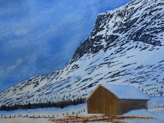 Skogshorn 40x50