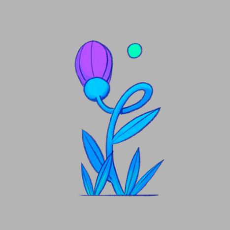 Pokeflower - 04