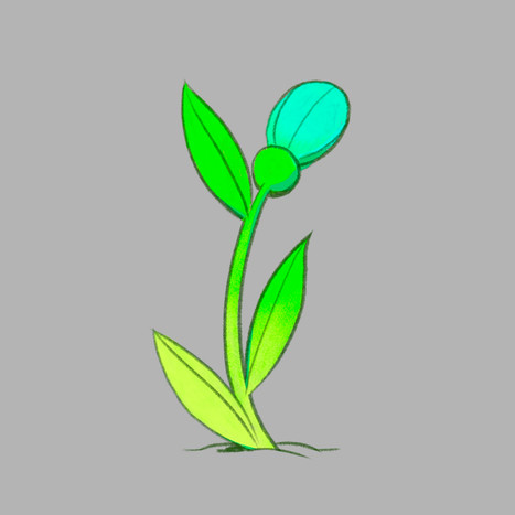 Pokeflower - 08