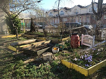 Garden Revitalization.jpg
