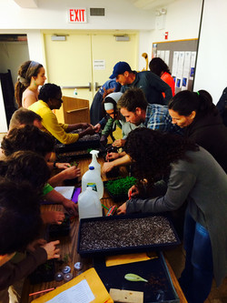 Adult Education Workshops
