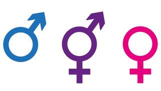 Gender Neutrality in Rape Laws