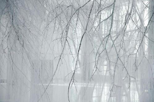 Vertical emptiness / Ветикальная пустота