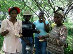 Women Beekeepers Sample Honey