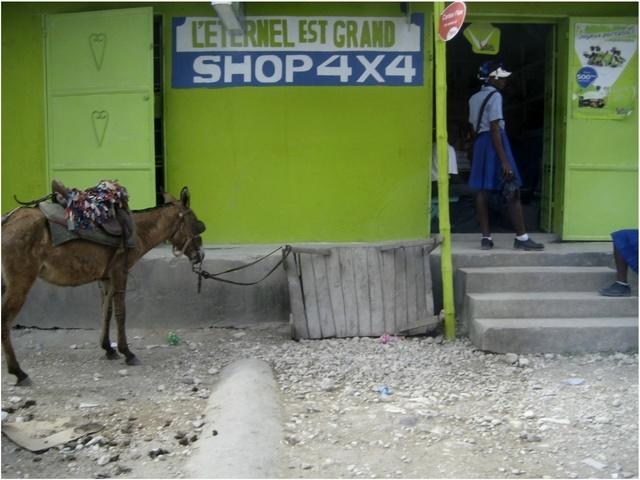 Donkey transporting produce
