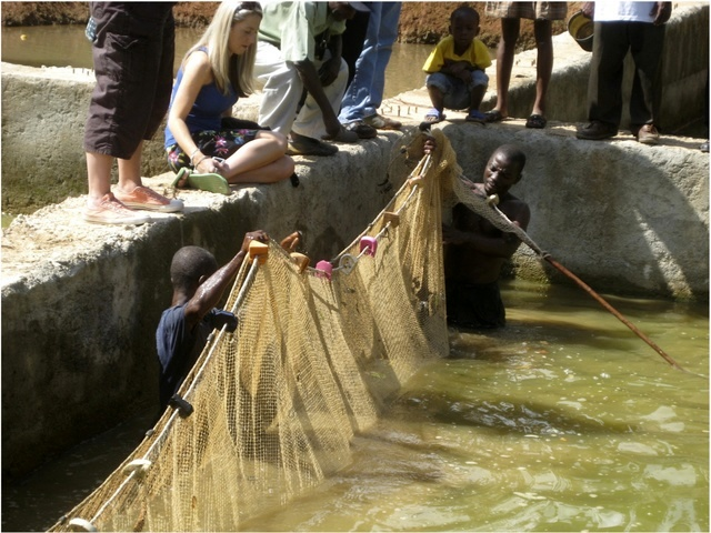 Large Nets to Catch Fish