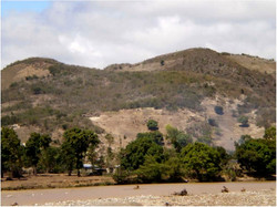 Deforested Hillside