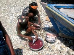 Preparing and Selling Fish