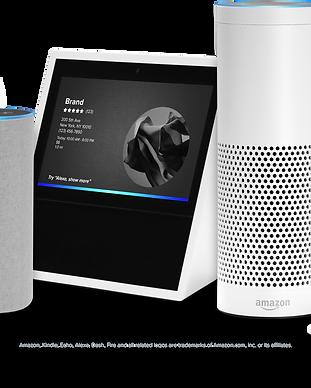 Alexa-LP_header-1-1.png
