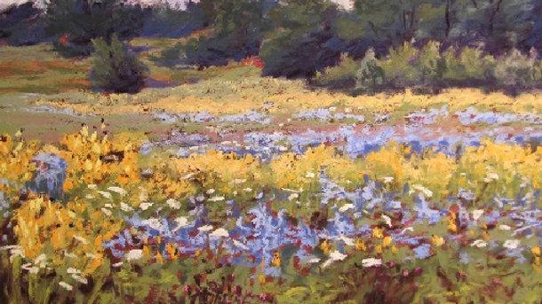 Prairie Blue – Mequon  Nature Preserve