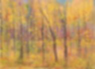 Montgomery.BeyondBeginner.Autumn Timm's
