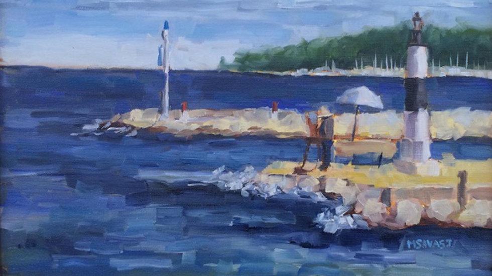 Door County Waterfront with Michelle Savas Thompson