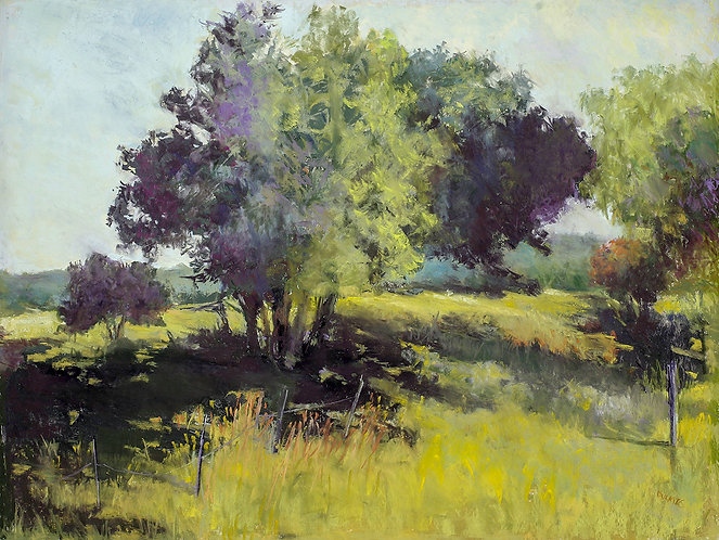 A Little Further Down the Pastels Road-Beyond Basics with Audrey Dulmes-10/22