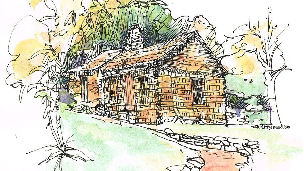 Virtual Basic Techniques in Pen and Ink with Ann Thomas 1/29