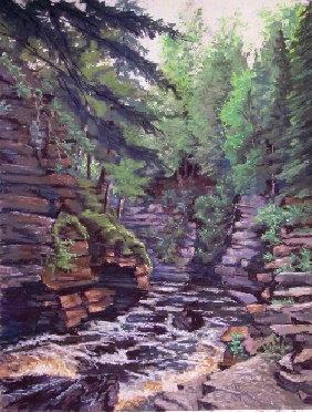 Canyon River - Upper Michigan