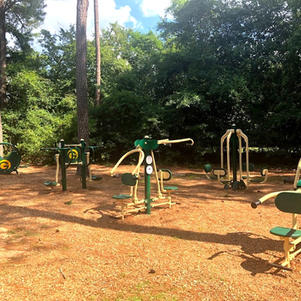 Outdoor Adult Exercise Equipment