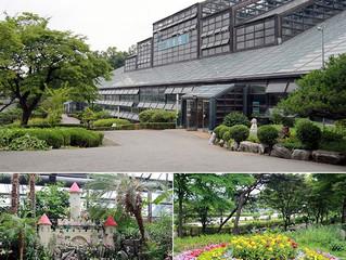 Оранжерея ботанического сада в Большом Сеульском парке