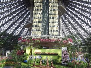 Ботанический сад Ёмичжи