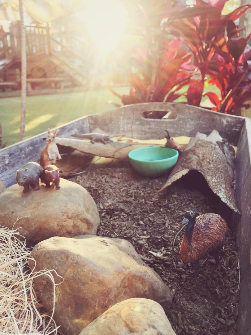 Outdoor Play in the Children's Garden