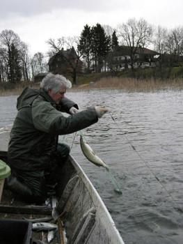 Fischen am Mattsee