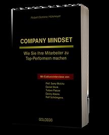 Company Mindset.png