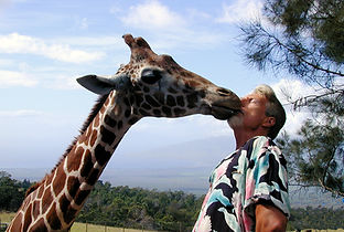 Gregory Appleby, Giraffe, Maui Hawaii