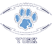 york2_transparent.png