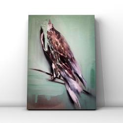 Headless bird No.1