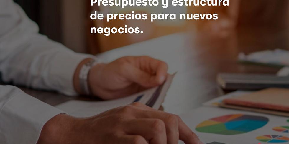 Presupuesto y estructura de precios para nuevos negocios (2 días)