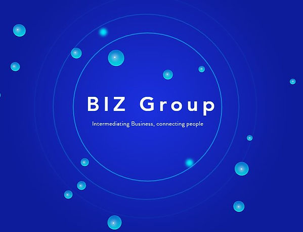 BIZ Group logo.JPG