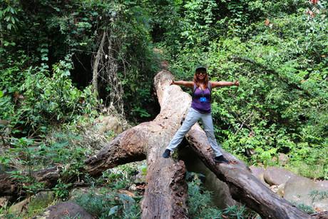 Jungle-walk-tree-roots-thumbs-up.JPG