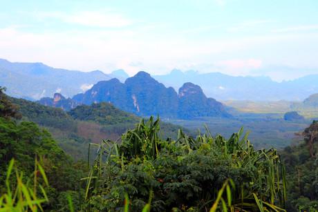 jungle-walk-cooking-viewpoint.JPG