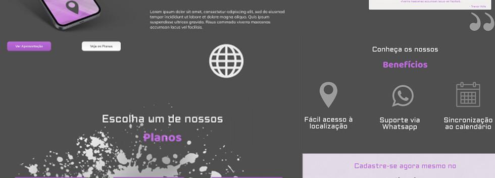Website Model