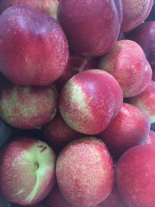 Nectarines - Large