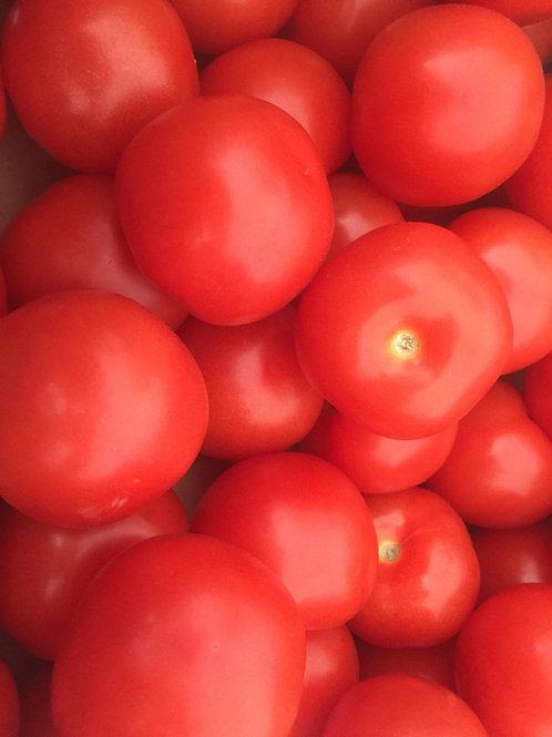 Salad Tomatoes per KG