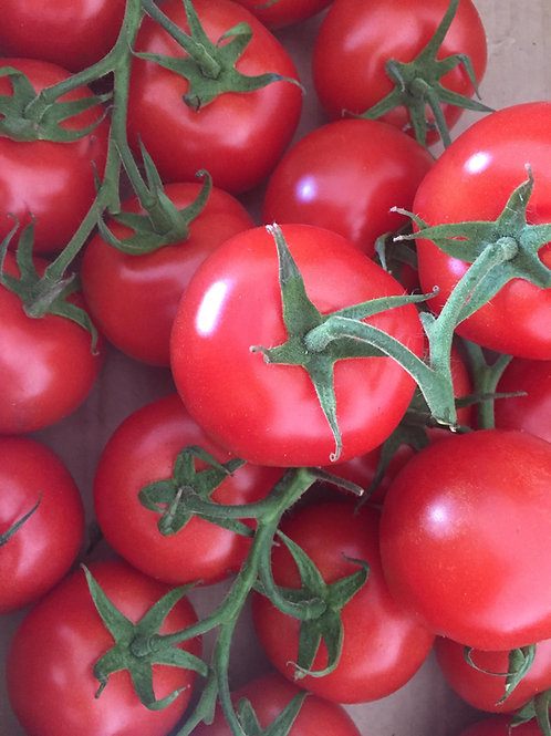 Classic on the Vine Tomatoes per kg