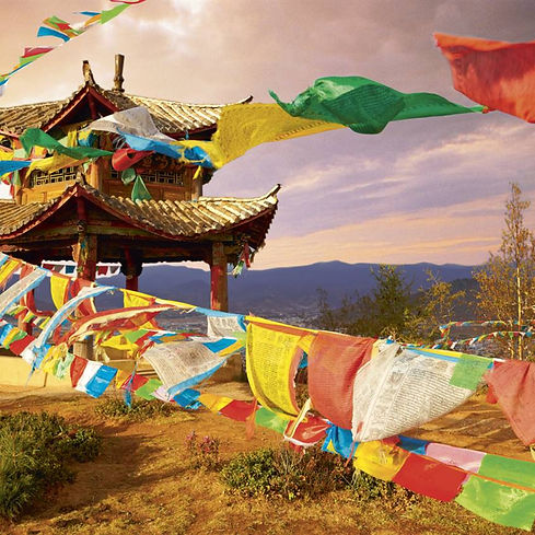 medicina-tradicional-tibetana_244e9f0a_846x846.jpg