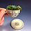 Thumbnail: Swirl Design Teacup Planter