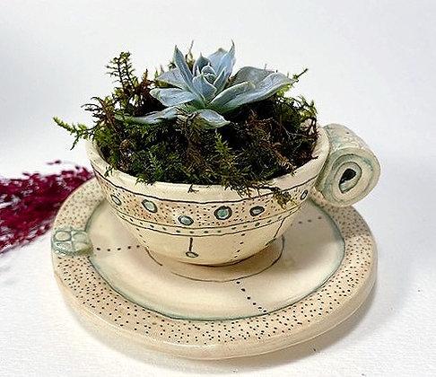 Teacup Planter Series