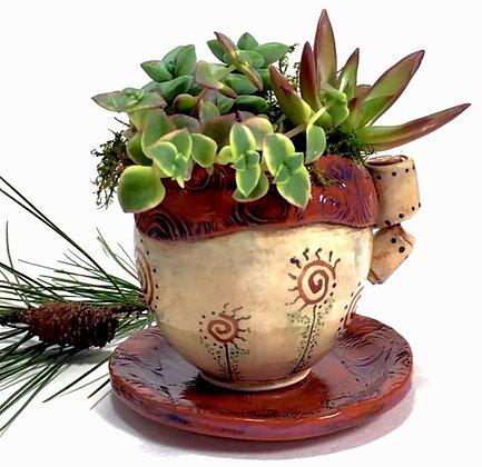 Funky Mug of Succulents