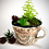 Thumbnail: Teacup Miniature Planter1